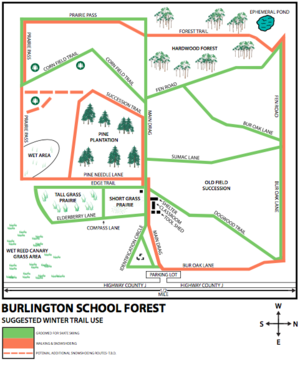 Burlington School Forest